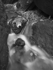 Cascade on small mountain stream, water runs over mossy boulders