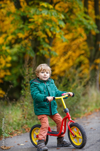 Cute preschool boy of three years riding bike in autumn forest