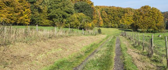Wanderweg Herbst Panorama