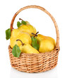 Juicy pears in wicker basket isolated on white