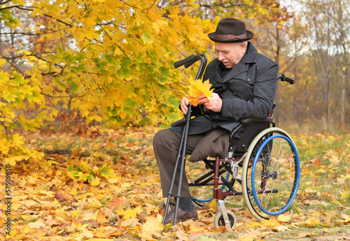 Disabled man in a wheelchair collecting leaves