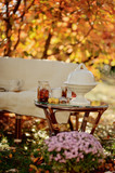 autumn sunny afternoon picnic in the park sofa and table utensil