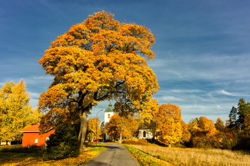 Autumn in Svennevad close to the midpoint of Sweden