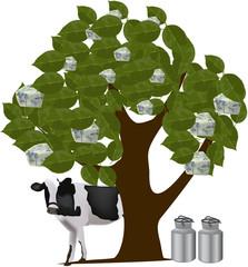 albero dell formaggio