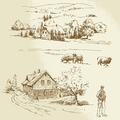 rural landscape, agriculture, farm