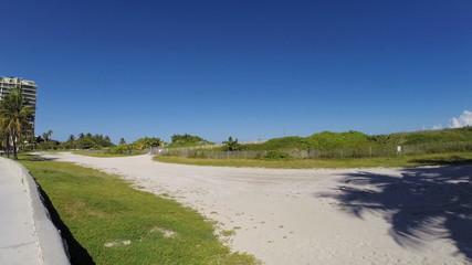 Miami beach dunes