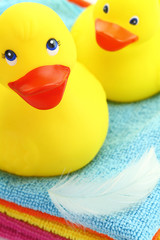 Rubber yellow ducks with feather and towels