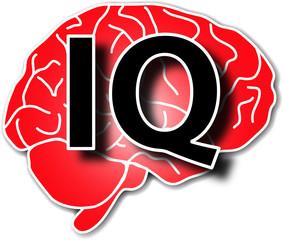 IQ Brain