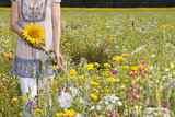 Woman holding sunflower in sunny meadow with wildflowers