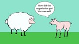 Sheep negotiation