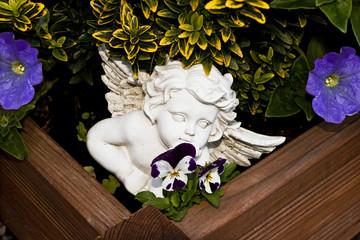 Engel zwischen Blumen