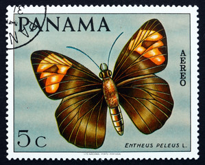 Postage stamp Panama 1968 Skipper Butterfly