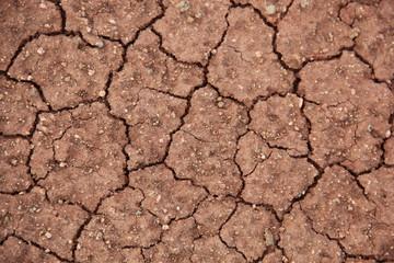Trockene Bodentextur – Erderwärmung (Maui, Hawaii, USA)