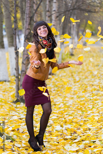 Autumn Leaves - Stock Image
