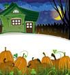 Pumpkins and brick house