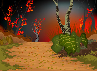 Wildfire destroys the environment nature background