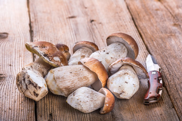 Porcini Mushroom lying on a Wooden Table