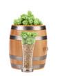 Barrel mug with barley hop.