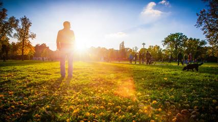 Herbst & Sonne