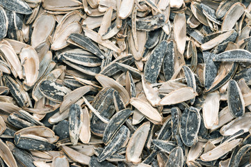 sunflower seeds with shell scours
