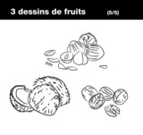 fruits à coque : noix de coco,noix, noisette