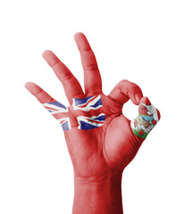 Hand making Ok sign, Bermuda flag painted