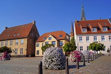 SCHLESWIG (Schleswig-Holstein) - Stadtpanorama