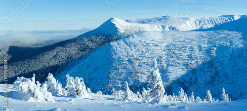 Winter mountain panorama with snowy trees