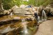 rivière en Forêt d'Aïtone corse