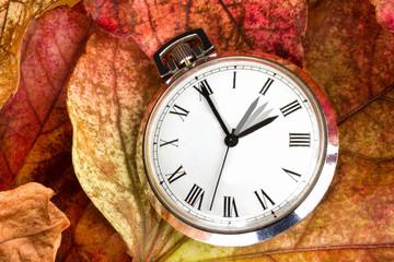 Taschenuhr Umstellung Winterzeit auf Herbstlaub