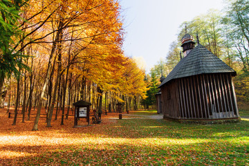 zapytkowe drewniane kapliczki, jesień w lesie łagiewnickim, Łódź