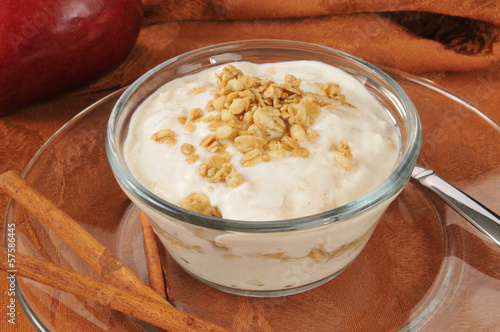 Apple cinnamon yogurt