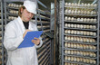 Farmer controls chicken eggs in incubator