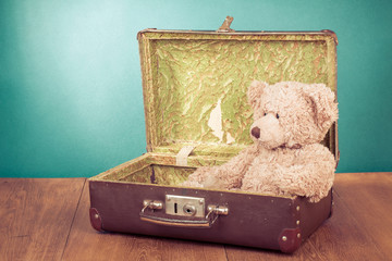 Teddy Bear toy sitting in old retro suitcase