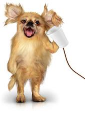 Cane al telefono
