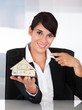 Businesswoman House Model