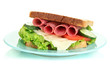 Tasty sandwich with salami sausage and vegetables
