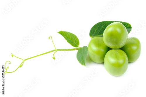 Green Peas with Leaves and Tendril Isolated on White Background