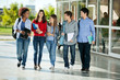 Students Walking Together On College Campus