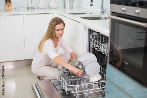 Happy gorgeous model kneeling behind dish washer