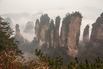 Foggy morning in Zhangjiajie mountains.