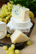 different kinds of cheese on a background of grape