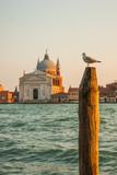 Church of the Most Holy Redeemer at sunset, Venice, Italy