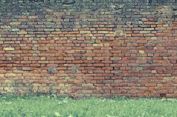 Muro su prato