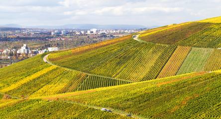 Weinberge im Herbst, Schnait im Remstal