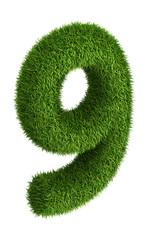 Natural grass number 9