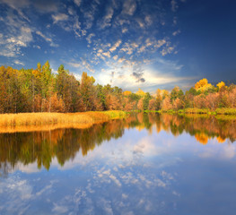 Autumn scene on lake