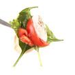 Tomato & mozzarella, spinach & rucola on a fork
