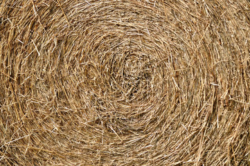 Texture of rick or straw.