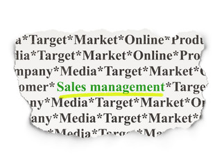 Advertising concept: Sales Management on Paper background